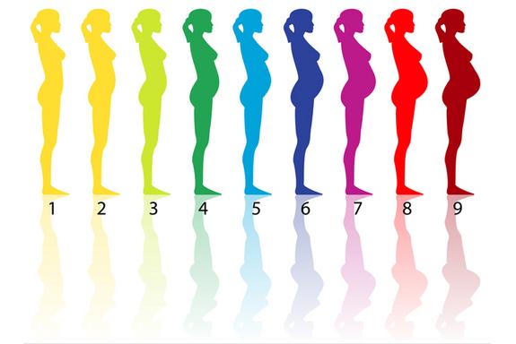 certified birth educator tips